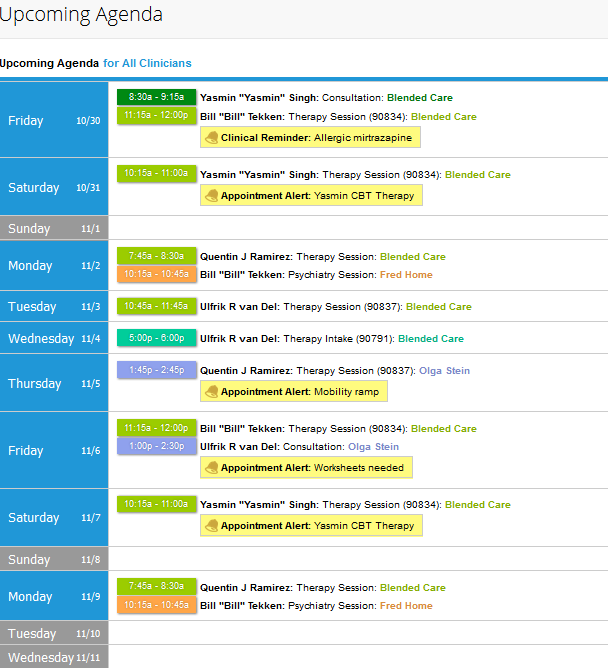 TherapyNotes Review Scheduling