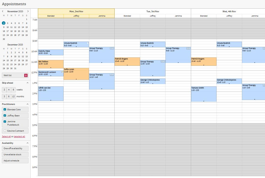 Cliniko Review Calendar Management