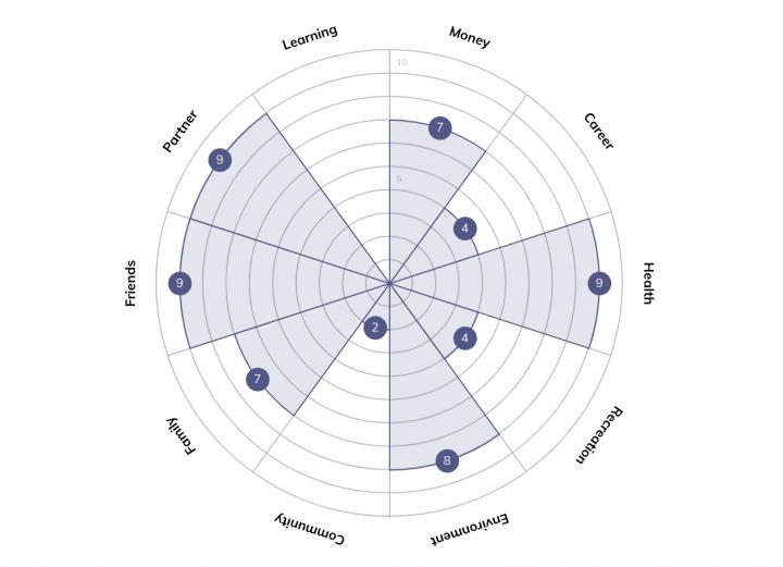 wheel of life scores