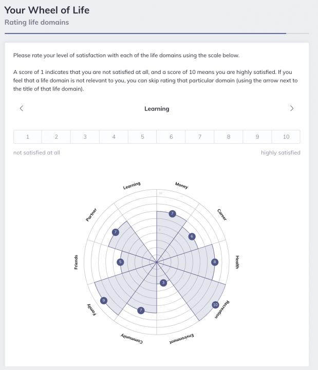 Wheel of life Coaching Software
