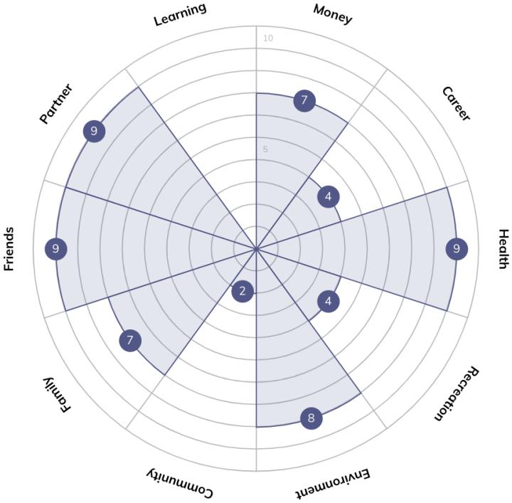 Quenza Wheel of Life Coaching Tool