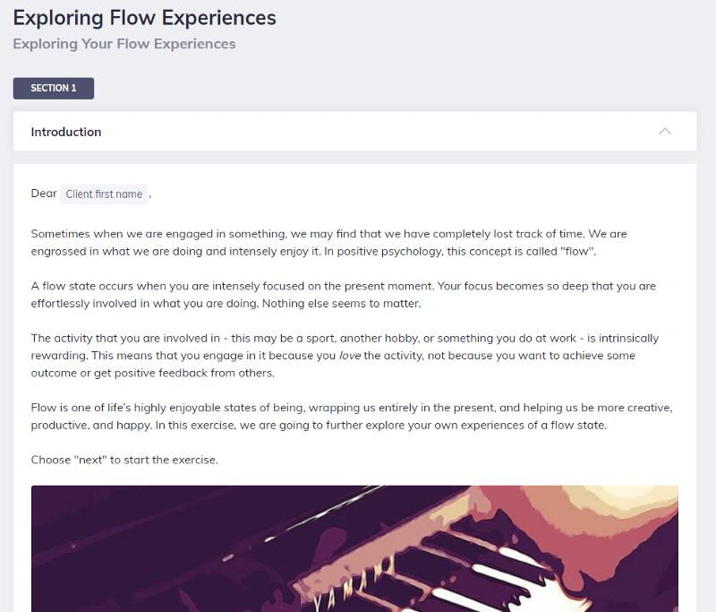 Flow Experiences